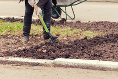 Man digging the ground with Royalty Free Stock Image