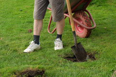 Man digging a hole with a shovel Stock Photo