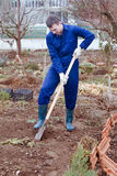 Man digging soil Royalty Free Stock Image