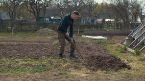 A man digs the ground with a shovel. A man approaches a shovel sticking out of the ground, takes it and starts digging the ground. . Slow motion camera stock video footage