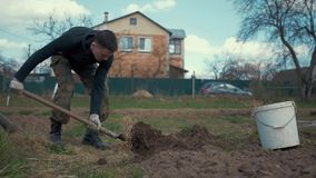 A man digs the ground with a shovel. A man approaches a shovel sticking out of the ground, takes it and starts digging the ground. . Slow motion camera stock footage