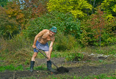 Man digs with spade 2. A man on garden digs the ground with spade Royalty Free Stock Photo
