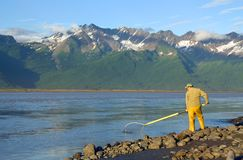 Man Dipnetting for Salmon Royalty Free Stock Photo