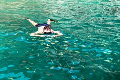 A man in the sea photographs a flock of colorful fish under water. A man dives with a mask and a pipe into the sea and takes pictures of a flock of colorful fish royalty free stock photography