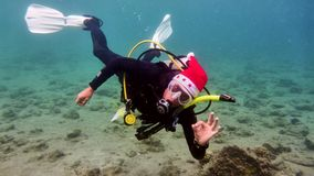 Man is diving in New Year hat. Read Sea. Eilat. Israel stock images