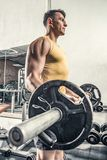 Man does barbell excercise. At the gym Stock Images