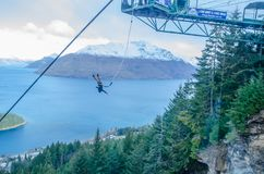 The man does solo bungee jumping from a platform at the top of the Gondola in Queenstown provided by The Ledge Swing. Queenstown, New Zealand. - On July 14 royalty free stock photography
