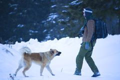 Man and dog. Mountaineer young man and a dog bounding in snow Stock Images