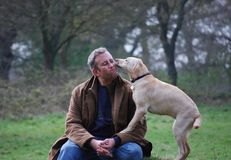 Man and dog royalty free stock photo