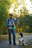 Man and dog in autumn park. Young man with dog walks in autumn park. He gives command to sit pet. Dog is hunting, short-footed, lop-eared and spotty royalty free stock photography