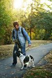 Man and dog in autumn park. Young man with dog walks in autumn park. He keeps pet on leash. Dog is hunting, short-footed, lop-eared and spotty stock images