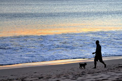 Man and dog at Bali beach Royalty Free Stock Photo