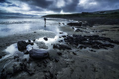 Man and dog on a beach in an approaching storm. Atmospheric scene of a man and dog on a beach in Ireland in front of Skelly Island with an approaching storm with Stock Photography