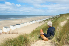 Man with dog at the beach Stock Image