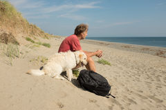 Man and dog on beach. Stock Image