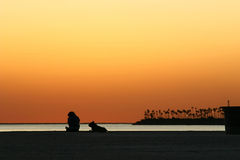 Man and dog on beach at sunset Stock Image
