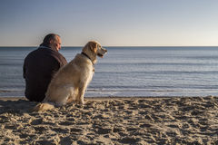 Man and dog on beach in winter sun Royalty Free Stock Photos
