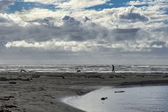 Man with dog on a deserted beach royalty free stock photo