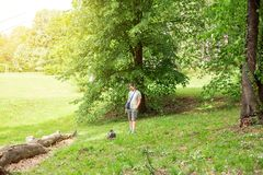 Man with dog enjoying in park royalty free stock images