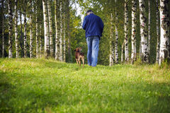 Man dog forest trees Royalty Free Stock Image