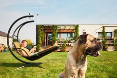 Man with dog on the garden Stock Photography