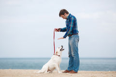Man and dog having fun on seaside. royalty free stock photos