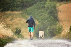 Man with dog in heavy rain. Young man running with his dog & x28;labrador retriever& x29; in heavy rain on the rural road stock photography