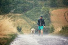 Man with dog in heavy rain. Young man walking with his dog & x28;labrador retriever& x29; in heavy rain on the rural road royalty free stock photography