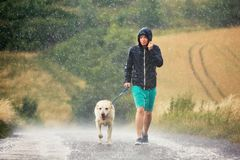 Man with dog in heavy rain. Young man walking with his dog & x28;labrador retriever& x29; in heavy rain on the rural road royalty free stock image