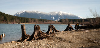 Man Dog Hiking Shore Rattlesnake Lake Mount Si Mountain Stock Photos
