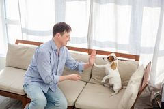 Man with dog at home. Adult man with his beloved pet Stock Photo