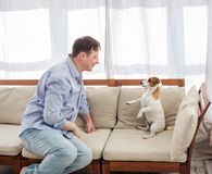 Man with dog at home stock images