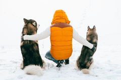 Man with dog Huskies back view sit on snow. Friendship animal dog and man. Royalty Free Stock Images