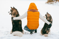 Man with dog Huskies back view sit on snow. Friendship animal dog and man. Stock Image