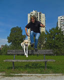 Man And Dog Jumping Over The Bench. Adult man and his dog jumping together over the bench at the promenade Royalty Free Stock Photography