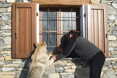 Man and dog looking at window. Man and his wolf dog looking at window Royalty Free Stock Images