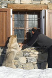 Man and dog looking at window. Man and his wolf dog looking at window Stock Photo