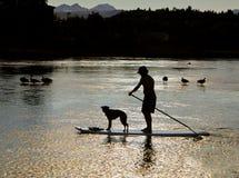 Free Man, Dog On Paddle Board, Oregon Royalty Free Stock Image - 25905436