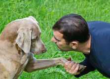 Man and dog outdoors royalty free stock photo