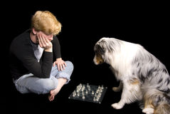 Man and Dog Play Chess Stock Photos