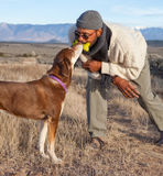 Man and a dog playing. Man and a dog sharing a toy bone (ew!), playing Royalty Free Stock Photography