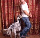 Man and dog playing Royalty Free Stock Images