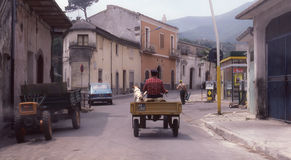 Man and dog riding tractor in Italy Stock Photography