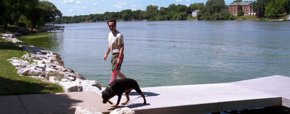 Man and Dog on River Docks Stock Photography