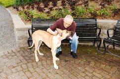 Man with dog. stock photos