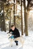 Man and dog Siberian Husky in the forest in winter. Sun Stock Image