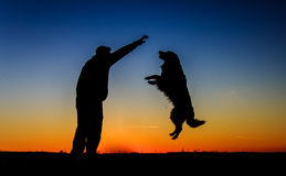 Man & Dog Silhouette. Beautiful Men & Dog Silhouette / Sunset Landscape Stock Photography