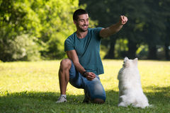 Man And Dog Sitting In Harvested Field Royalty Free Stock Images
