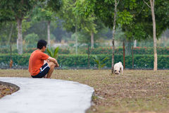 Man and dog. Spending time at the park royalty free stock photos