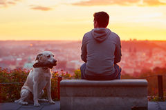 Man with dog at the sunrise Royalty Free Stock Images